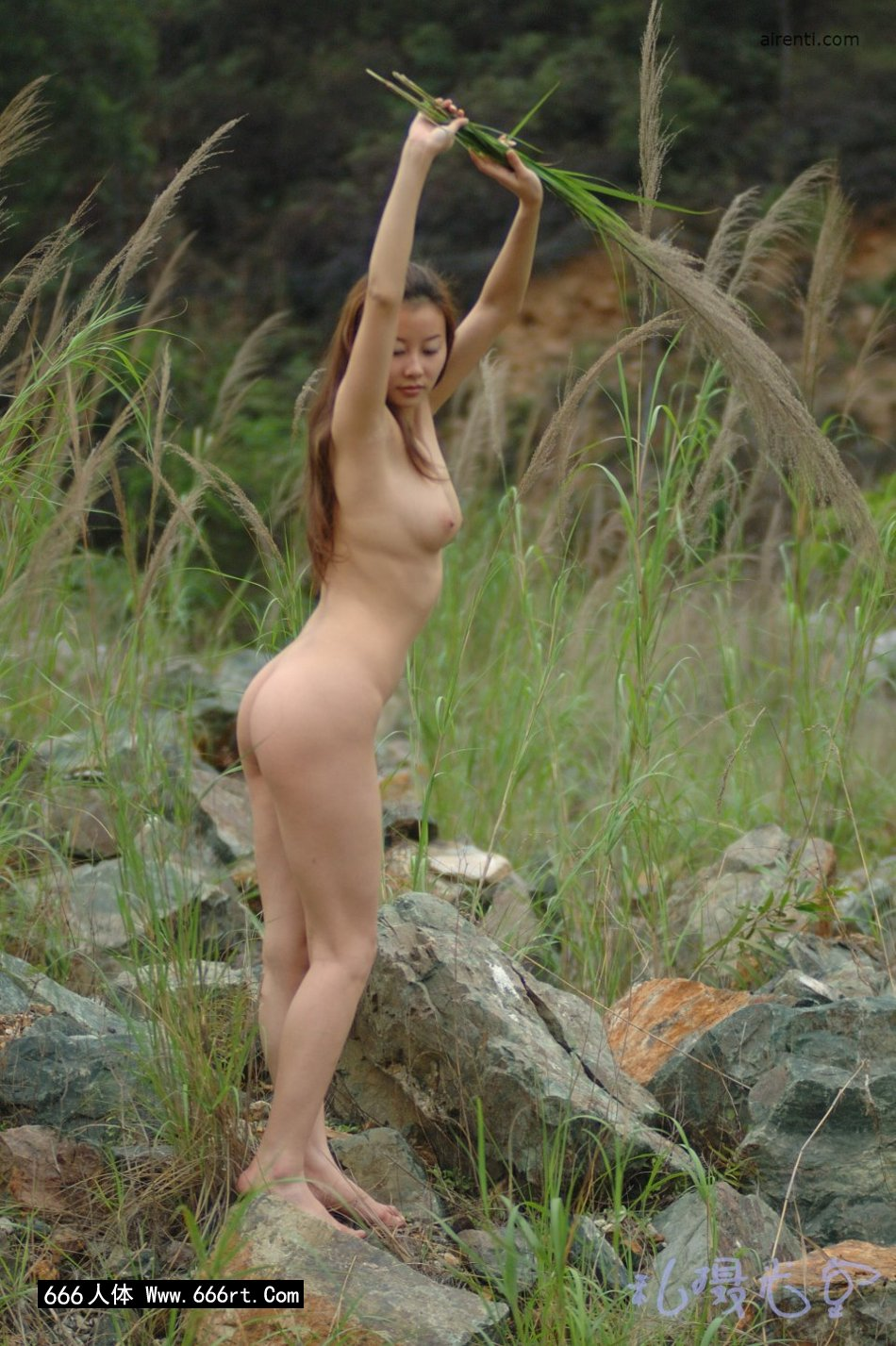 皮肤白身材好的王丹芦苇丛中外拍_99人体艺术